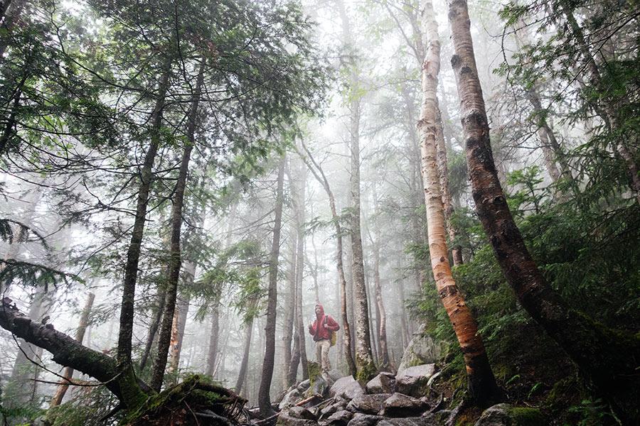 hiking wnc mountians